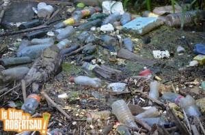 Ceux qui détruisent la terre dans Avertissement pollution-11-300x198